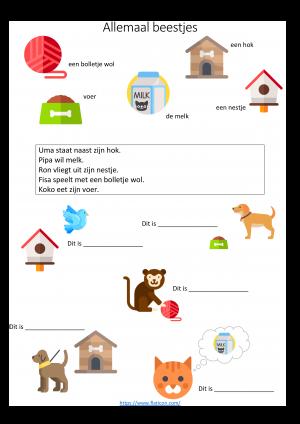Voorbeeld uit de opdracht begrijpend lezen dieren