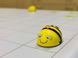Afbeelding van de BeeBot - geelkleurig robotje in de vorm van een bij