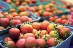 tomaten in de winkel