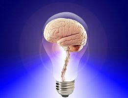 gloeilamp met hersenen in