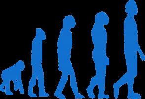 evolutie aap mens