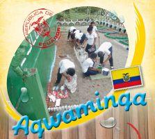 Spel 'Agwaminga'