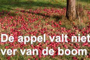 appels naast appelboom