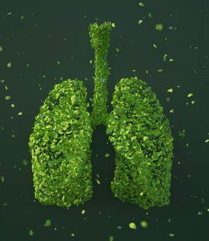 longen met bladeren