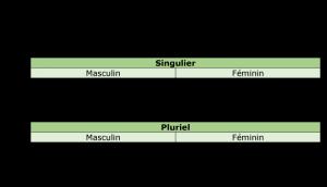 Voorbeeld uit: le pronom démonstratif.docx