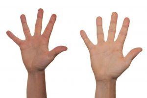 tien vingers