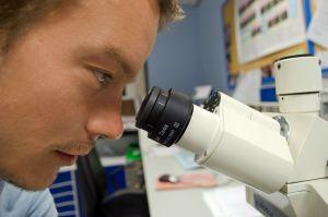 een jongen kijkt in de microscoop