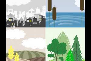 Een aantal habitats uit het bordspel