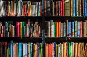 kast vol boeken