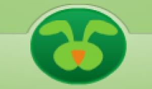 Logo Big green rabbit