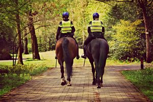 police officers on their horses