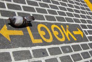 Het woord 'look' op de grond