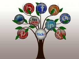 Een boom met aan iedere tak een logo van een sociaal netwerk