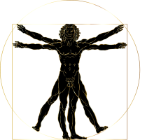 lichaam Leonardo Da Vinci