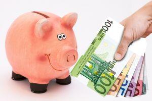 spaarvarken en eurobriefjes