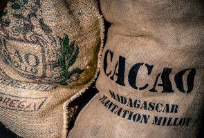 zak cacao