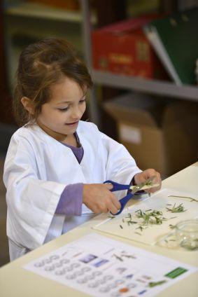 Een kleuter experimeert met het fijnmaken van de kruiden tijdens de STEM-workshop