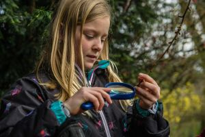A student looks at an insect through a magnifying glass