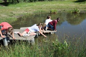 Students at the shovel pond during the workshop on ditches and puddles