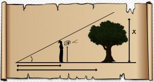 boom met daarrond een driehoek