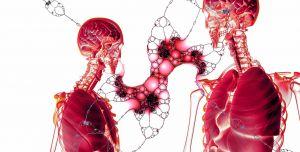 weefsels en skeletten