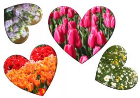 hartjes met bloemen