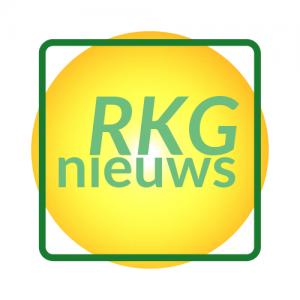 logo RKG news