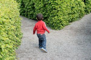boy in maze