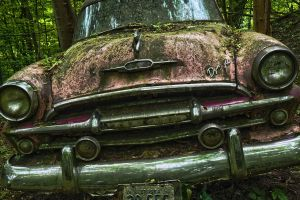 old car under moss