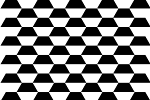 witte en zwarte trapeziums naast elkaar