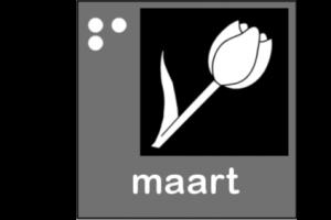 Picto van de maand maart: Tulp