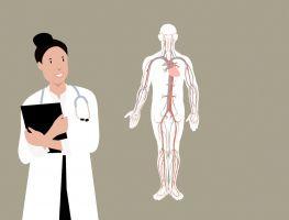 dokter staat langs een menselijk lichaam