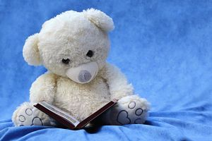 Cuddly bear reads in a book