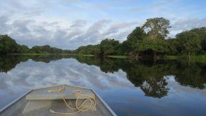 Boot op de Amazone