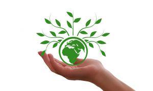 handje met een groene wereldbol vast