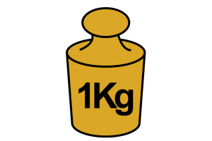1 kilogram