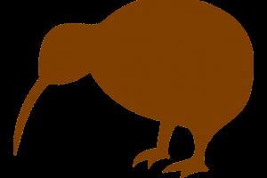 contour van een kiwi (vogel)