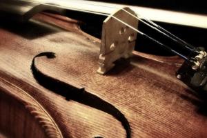 stukje van een viool