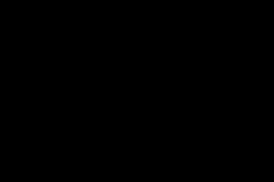 silhouet van jaartal 2019