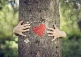 handen rond boom