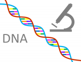 Visual over DNA-materiaal.