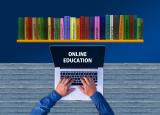 visual over online leren